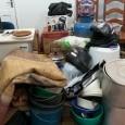 Polícia Civil de Guajará-Mirim recupera vários objetos furtados de escolas, comércios, residências e prende acusados de receptação Nesta segunda-feira (23/06) a Polícia Civil de Guajará-Mirim/RO recuperou vários objetos furtados de...