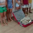Na noite da última quinta-feira, 19.05, a Polícia Civil em Porto Velho, através do Denarc, prendeu quatro mulheres e um homem que estavam com aproximadamente 34 kg de maconha. As...