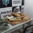Na tarde desta quinta-feira, 28.04, a Polícia Civil realizou a apreensão de pouco mais de 13 kg de maconha. A ação decorreu de investigação desenvolvida pelo Denarc (Departamento de Narcóticos)...